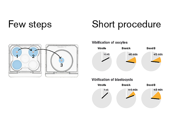 Smooth vitrification workflow.png